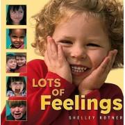 Lots of Feelings by Shelley Rotner