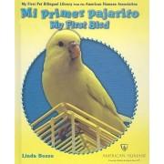 Mi Primer Pajarito/My First Bird by Linda Bozzo