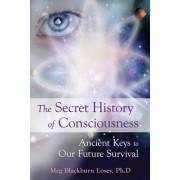 The Secret History of Consciousness by Meg Blackburn Losey