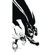 Batman Noir Dark Victory HC by Jeph Loeb