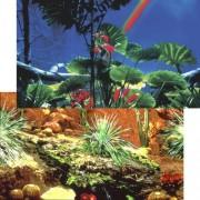 PENN PLAX Pozadí oboustr. 50cm/15m REPTILE Cactus Gard