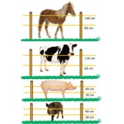 350 mt of 2.5 cm orange string