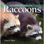 Exploring the World of Raccoons by Tracy Read