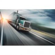 "5"" Навигация за Камион GPS SAT NAV, 4GB флаш памет, FM предавател, 128MB RAM памет"