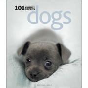 Dogs by Rachael Hale