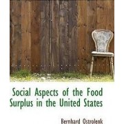 Social Aspects of the Food Surplus in the United States by Bernhard Ostrolenk