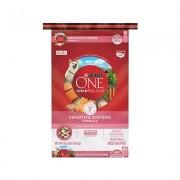 Purina ONE SmartBlend Sensitive Systems Formula Adult Premium Dry Dog Food, 16.5-lb bag