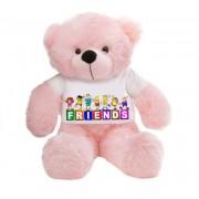 Pink 2 feet Big Teddy Bear wearing a FRIENDS T-shirt