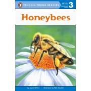 Station Stop 2: Honeybees by Joyce Milton