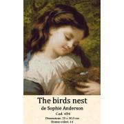 The birds nest (kit goblen)