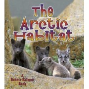 An Arctic Habitat by Molly Aloian