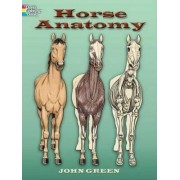 Horse Anatomy Coloring Book by John Green