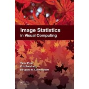 Image Statistics in Visual Computing by Tania Pouli
