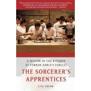 The Sorcerer's Apprentices by Lisa Abend