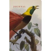 Natural Histories Journal: Bird by American Museum of Natural History