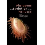 Phylogeny and Evolution of the Mollusca by Winston Ponder