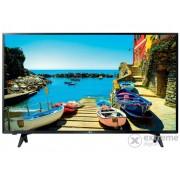Televizor LG 43LJ500V LED