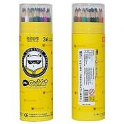 Life Boost Artist's Wood Drawing Sets Adult Coloring Pencils For Secret Garden Coloring Books (36-Color Cylinder)