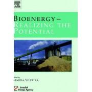 Bioenergy by Semida Silveira
