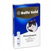 Bolfo Gold Kat 80 - 4 Pipetten