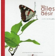 The Wings of Desire / Les Ailes du Desir