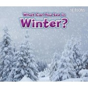 What Can You See in Winter? by Sian Smith