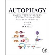 Autophagy: Cancer, Other Pathologies, Inflammation, Immunity, Infection, and Aging by M. Hayat