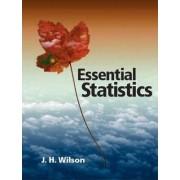 Essential Statistics by Janie H. Wilson