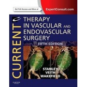 Current Therapy in Vascular and Endovascular Surgery by James Stanley