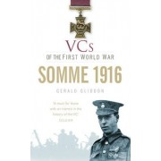 VCs of the First World War: Somme 1916 by Gerald Gliddon