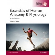 Essentials of Human Anatomy & Physiology with Mastering A&P by Elaine N. Marieb