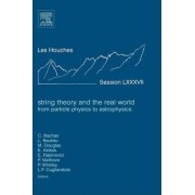 String Theory and the Real World: From Particle Physics to Astrophysics by Costas Bachas