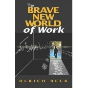 The Brave New World of Work by Ulrich Beck