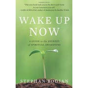 Wake Up Now by Stephan Bodian