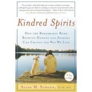 Kindred Spirits by D V M Allen M Schoen