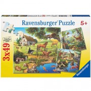 PUZZLE PADURE, ZOO SI ANIMALE DOMESTICE, 3X49 PIESE (RVSPC09265)
