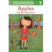 Apples by Laura Driscoll