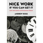 Nice Work If You Can Get it by Andrew Ross