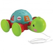 Fisher-Price Pull-Along Turtle (Multicolor)
