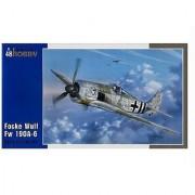 Special Hobby Focke Wulf Fw190A6 Early Sturmbirds Fighter (1/48 Scale)
