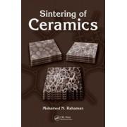 Sintering of Ceramics by Mohamed N. Rahaman