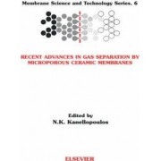 Recent Advances in Gas Separation by Microporous Ceramic Membranes by N. K. Kanellopoulos