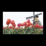 473 Bollenveld Tulp Borduurpakket