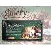 Pasztell kréta készlet - Mungyo Gallery Artists' Soft Pastels Earthtone