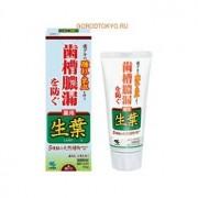 KOBAYASHI Паста зубная для профилактики заболеваний десен «Японский кипарис», 100 гр.
