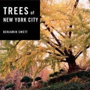 Trees of New York City by Benjamin Swett