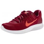 Nike Lunarglide 8 But do biegania Kobiety czerwony Buty Barefoot i buty minimalistyczne