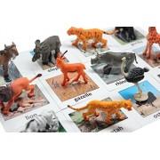 Montessori Safari Animal Match - Miniature Animals with Matching Cards - 2 Part Cards. Montessori Le