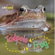 Tadpole to Frog by Camilla de La Bedoyere