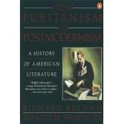 From Puritanism to Postmodernism by Malcolm Bradbury